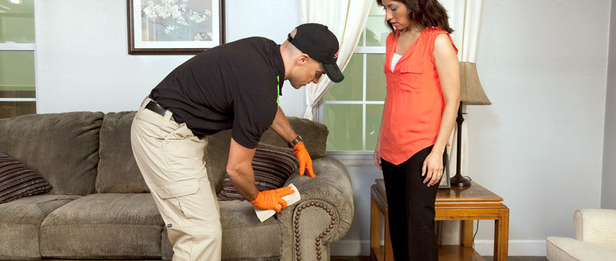 Glendora, CA carpet upholstery cleaning